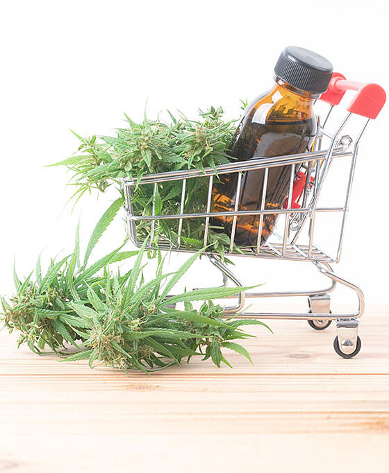 cannabis-img4